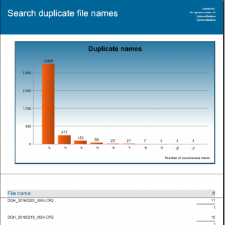 Duplicate file names